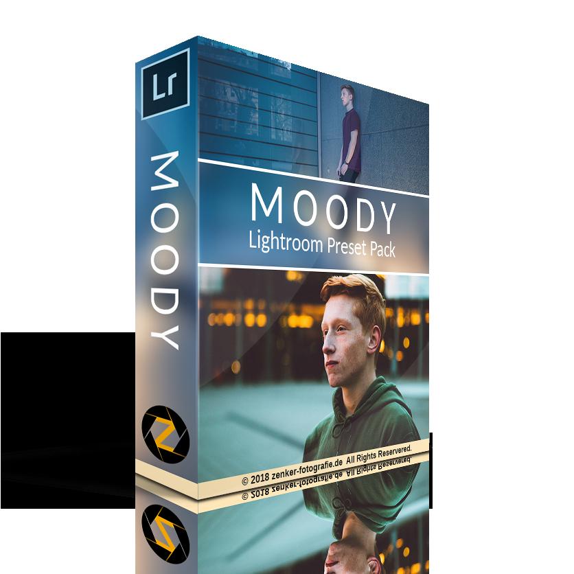 lichtroom moody preset pack